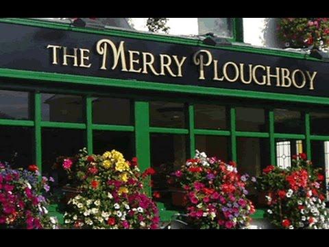 The Merry Ploughboy Irish Music Pub Dublin