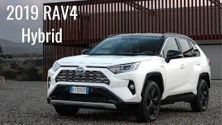 2019 Toyota RAV4 Hybrid  (GAS + electric power)