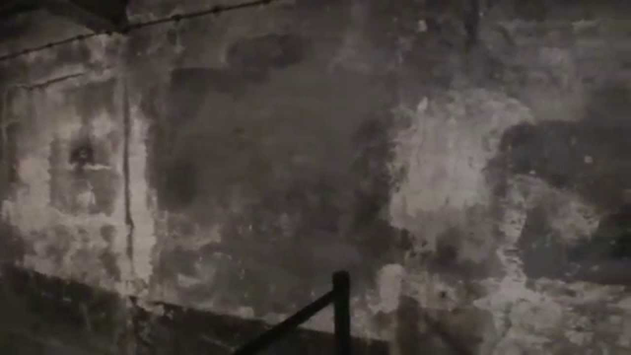 Auschwitz Concentration Camp Gas Chamber Youtube