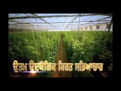 Punjab leading in the solar energy generation under the guidance of Bikram Singh Majithia