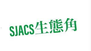 Publication Date: 2020-11-21 | Video Title: SJACS聖若瑟英文中學生態角