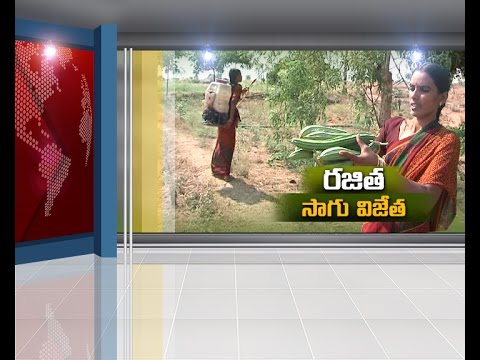 Organic Farming | By Women Farmer | From Yadadri Bhongir Dist | A Story