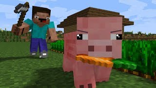 Pig Life - CraftTheHero Minecraft Animation