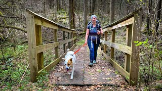 Backpacking With DOGS - Lessons Learned