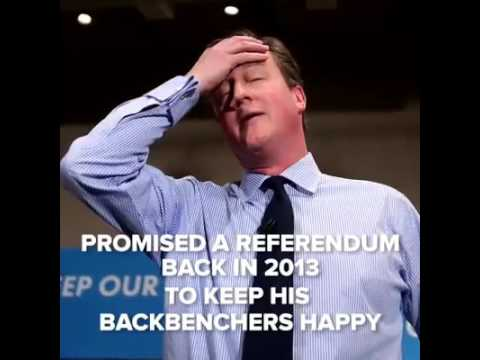 EU Referendum debate with David Cameron, Prime Minister of the United Kingdom