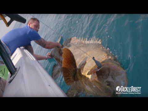 Вопрос: Что это за рыбка с рябеньким хвостиком (фото) Как называется?