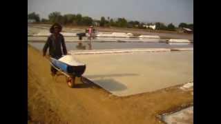 Vietnam: Salt of the Earth