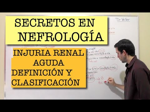 insuficiencia-renal-aguda:-definición,-controvérsias,-etiología,-clasificación