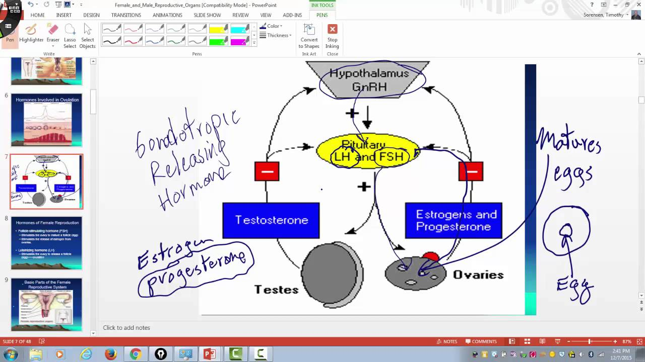 Hormones of the female reproductive cycle youtube hormones of the female reproductive cycle ccuart Images