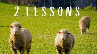Two lessons from kosher animals
