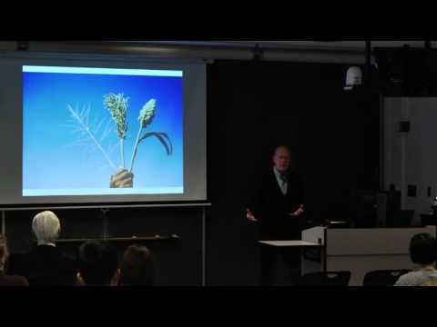 Stephen Kresovich - Understanding the Carbon Allocation Network for Sorghum