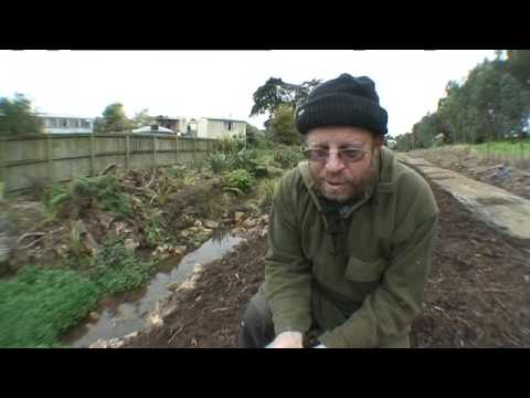 Sticky Mulch - Waiheke Waste Resources Trust