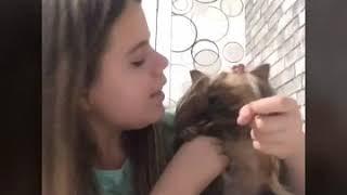 Что делать если собака не ест: Катя все покажет и расскажет!!!