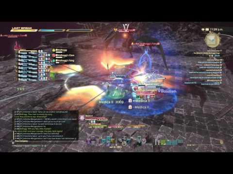 Final Fantasy XIV : Nidhogg Extreme - No Job Crystals