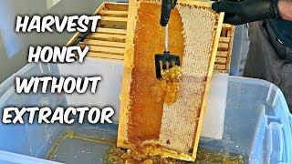 Harvest Honey - Part 4