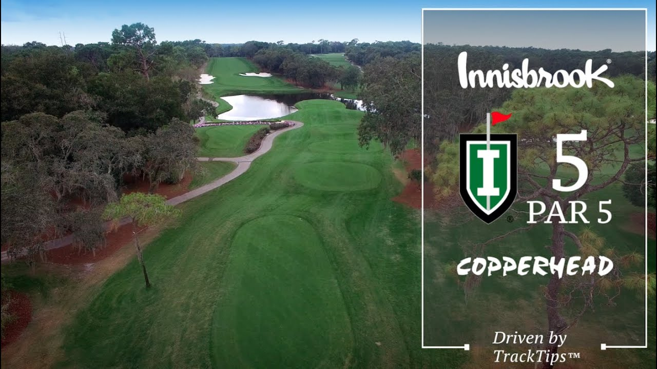 Image result for Innisbrook Copperhead Course hole 5