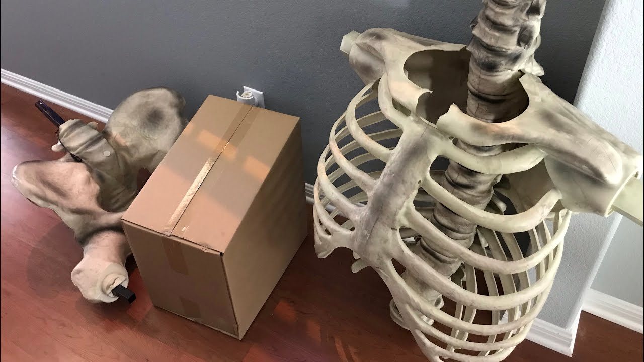 12ft Skeleton Home Depot First Look And Box Size Psa Youtube