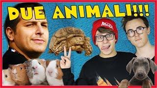 REGALO DUE ANIMALI A SURRY & ST3PNY!!!