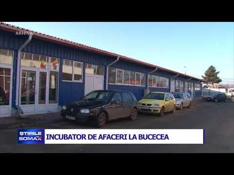 INCUBATOR DE AFACERI LA BUCECEA