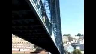 Passarinho salto da Ponte D.Luis, Porto