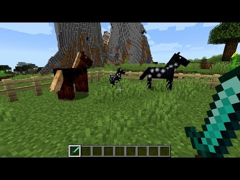 minecraft:-how-to-breed-horses---(minecraft-breeding-horses)