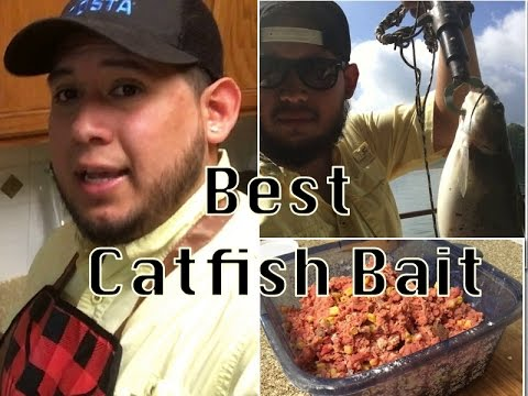 Best Catfish Bait Recipe With DJ MOE