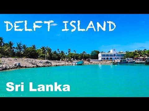 SRI LANKA'S SECRET HIDDEN PARADISE | DELFT ISLAND JAFFNA