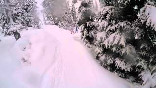 Whistler Blackcomb - Playing in the trees on a pow day