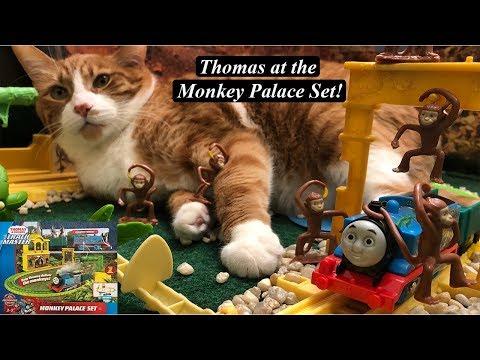 Thomas And Friends Toy Train Set-Trackmaster Thomas Monkey Palace Set!