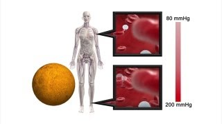 Mars manned mission: How living on Mars would change the human body
