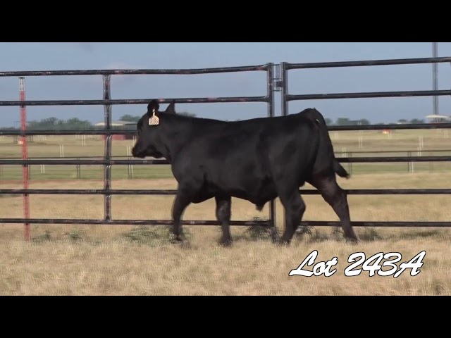 Pollard Farms Lot 243A