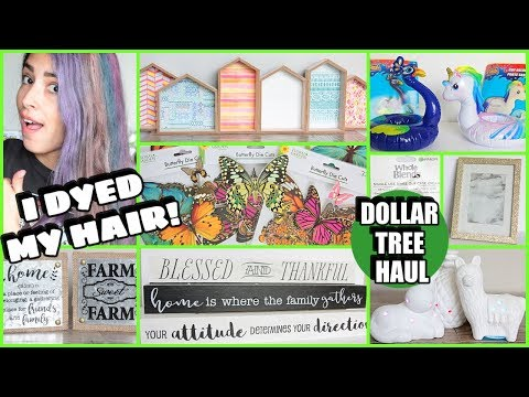 DOLLAR TREE HAUL MAY 2019 NEW FINDS
