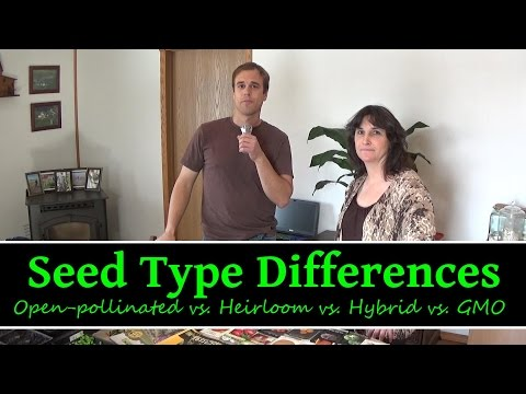 Garden Seed Type Differences Heirloom, Open Pollinated, Hybrid, GMO Garden Seeds  Wendy HeartSong