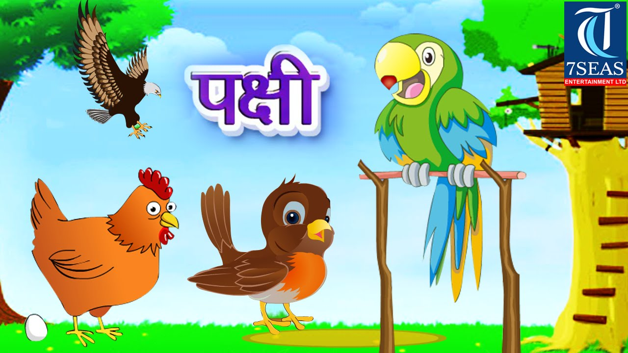 learn types of birds for learning for kids marathi animation