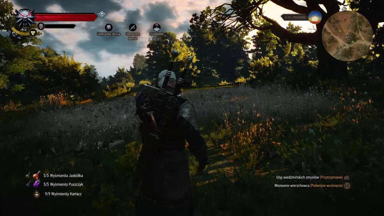 Wybitny Wiedźmin 3: Dziki Gon #konfrontacja petardy AlchemyBuild - YouTube IW92