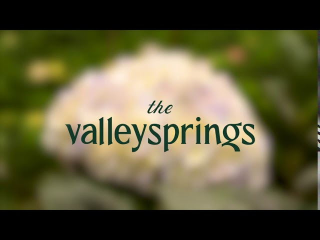 The Valley Springs
