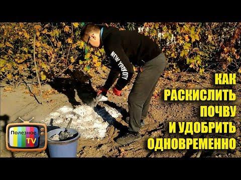 Как убрать кислотность почвы в огороде