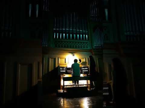 Tetyana Sporynina: Концерт Жан-Марі Леруа у Чернівцях. Фрагмент І