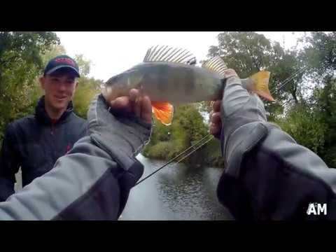 Perch Fishing By The River Barrow