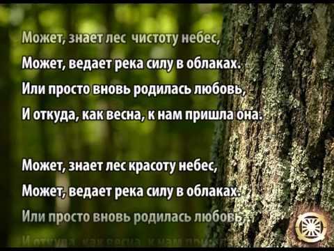 Поиск клада! Дремучий лес.