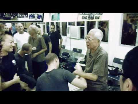 Chu Shong Tin | The King of Siu Nim Tao Part II