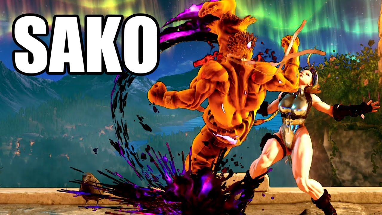 影の開拓者 SAKO影のキャミィ戦 Sako(Kage) VS Soramimi(Cammy)