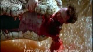 Download Video Movie Stills From Crocodile 2: Death Swamp (2002) MP3 3GP MP4