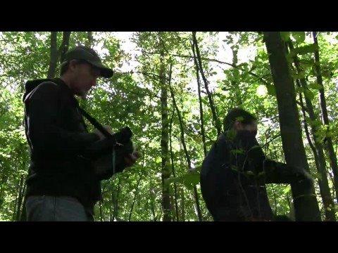 UWGB Forest Dynamics Research