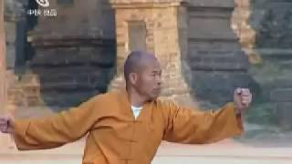 Repeat youtube video Shaolin Taizu Chang Quan by ShiDeYang