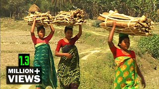 KOCH OF JHINAIGATI │ TRIBAL PEOPLE OF BANGLADESH │ ঝিনাইগাতির 'কোচ ক্ষুদ্র নৃ গোষ্ঠী'