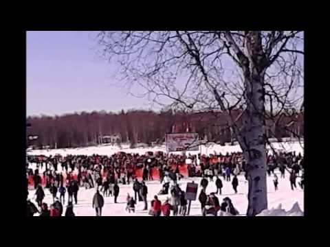 2014 Iditarod Movie - for TOGO & BALTO