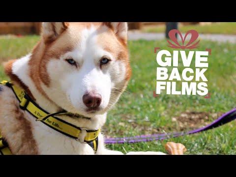 Give Back Dog Edition