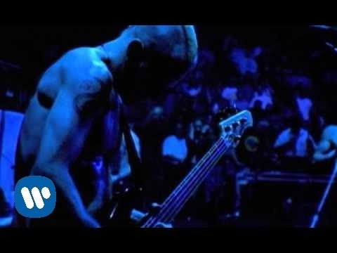 Red Hot Chili Peppers - Coffee Shop [Official Music Video]