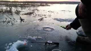 первая рыбалка в жизни